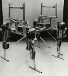 19-phony-pony-1968.jpg
