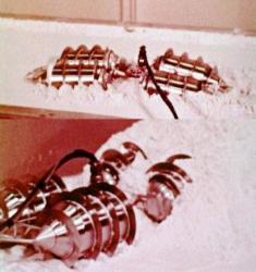 58-RC-Articulated-screw-vehicle.jpg