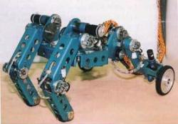 66-adachi-s-walk-n-roll-1999.jpg