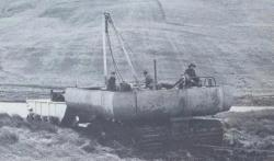 Albion-Cuthbertson-Water-Buffalo.jpg