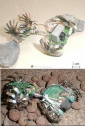 Lamalice-Robot-1999-2.jpg