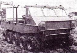 Pacca-10x10.jpg
