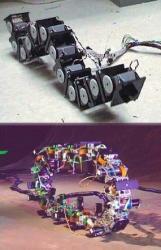 Polybot-snake-robot-G3.jpg