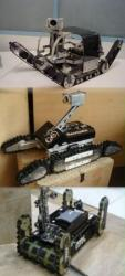 Snail-Resquake-MRL-recue-robots.jpg