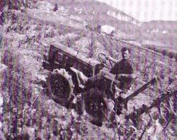 buffle-tractor.jpg