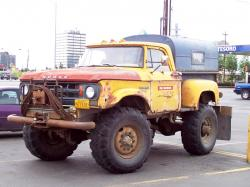 Dodge w 300 swamp fox