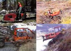 forest-vehicles-1.jpg