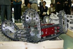 hibiscus-robot-2006.jpg