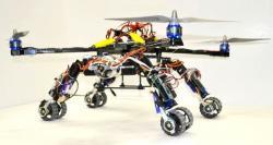 Hybrid robot herald