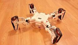 Hybrid walker robot
