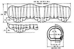 lunar-worm-1966-2.jpg