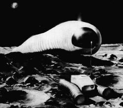 lunar-worm-1966.jpg