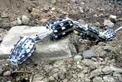 moira-i-snake-robot.jpg
