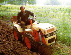 pasquali-articulated-tractor-4x4.jpg