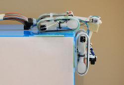 robot-gecko-2011.jpg