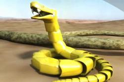 snake-like-robot-of-brian-thompson.jpg
