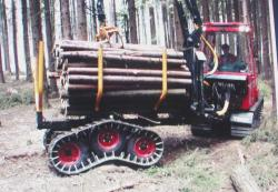 terri-34-forwarder.jpg