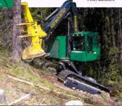 timberjack-608-l.jpg