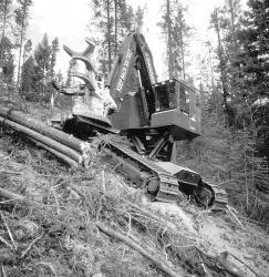 timberjack-608l.jpg