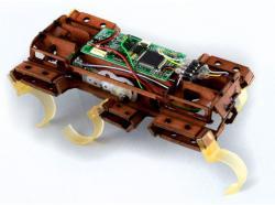 Velociroach robot