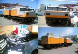 vityaz-of-ichimbai-plant-1.jpg